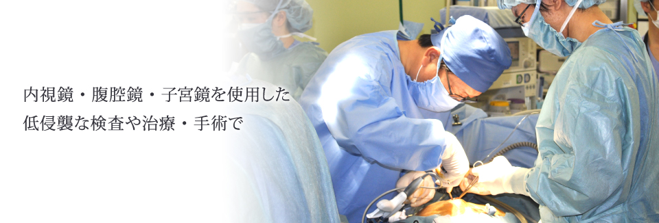 内視鏡・腹腔鏡・子宮鏡を使用した低侵襲な検査や治療・手術で